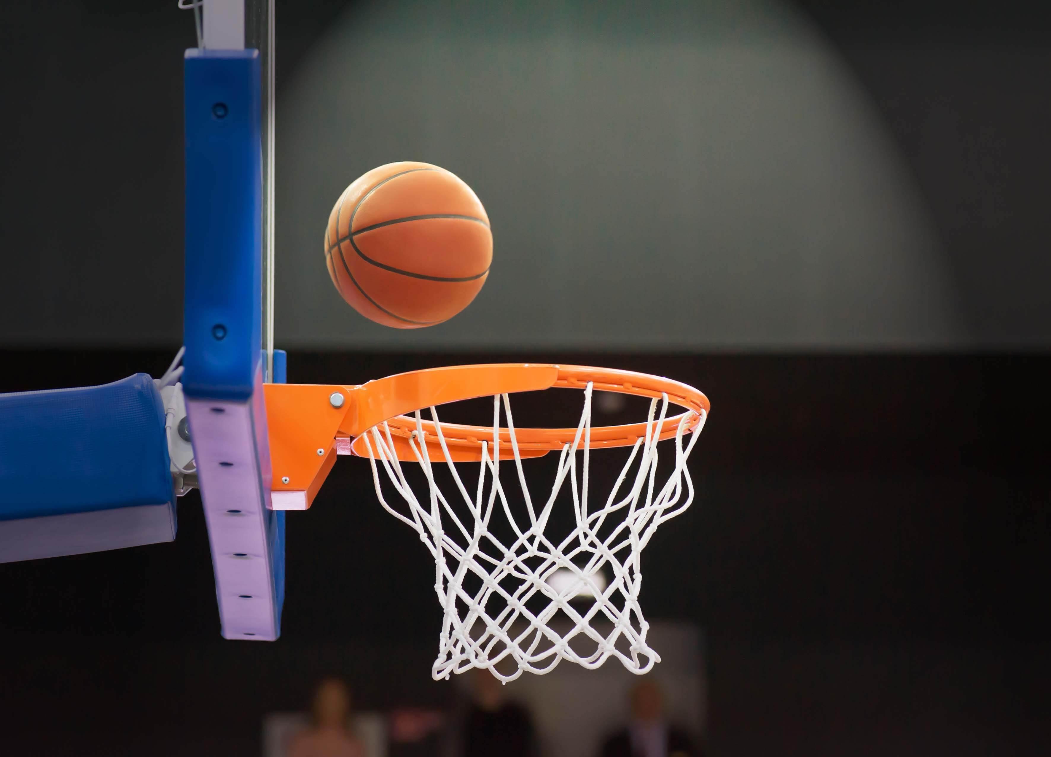 Basketball Netting