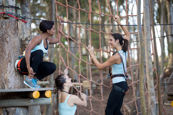 Climbing Nets