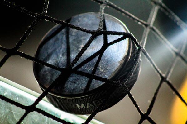 Hockey Safety Netting